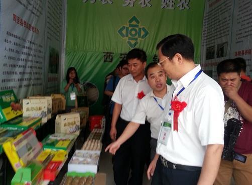 2015陕西供销(渭南